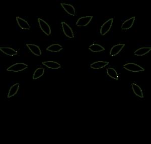 activites-arboricole-et-maraicheres